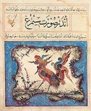 Abu Said Ubaud Allah Ibn Bakhitshu's Ibn Bakhtishu's Manafi' al-Hayawan is an illustrated bestiary in the Persian language.<br/><br/>  The Bakhtshooa Gondishapoori (also spelled Bukhtishu and Bukht-Yishu) were Assyrian Nestorian Christian physicians from the 7th, 8th, and 9th centuries, spanning 6 generations and 250 years. Some of them served as the personal physicians of Caliphs. Like all physicians in the Abbasid courts, they came from the Academy of Gundishapur in Persia (in modern-day southwestern Iran). They were well versed in the Greek and Hindi sciences, including those of Plato, Aristotle, Pythagoras, and Galen, which they aided in translating while working in Gondeshapur.<br/><br/>  Yahya al-Barmaki, the vizier and mentor to Harun al-Rashid, provided patronage to the academy and hospital in Gondeshapur and helped assure the promotion and growth of astronomy, medicine, and philosophy, not only in Persia but also in the Abbasid empire in general.